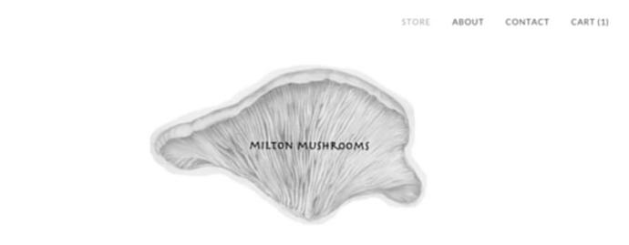 Milton mushrooms get yourself a mushroom grow kit solutioingenieria Images